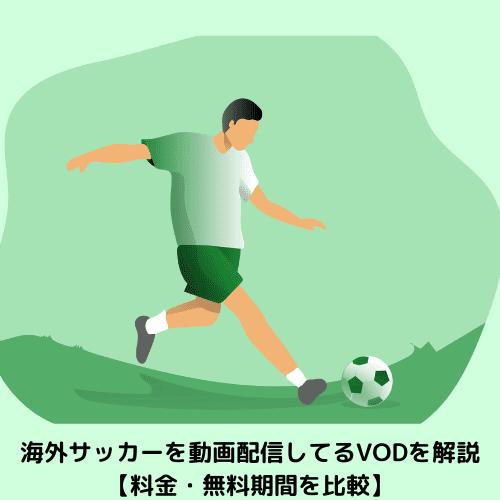 海外サッカーを動画配信してるVODを解説【料金・無料期間を比較】