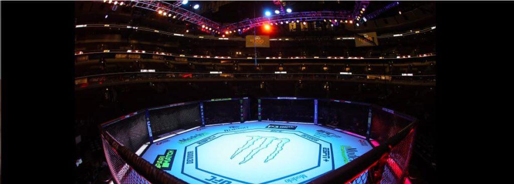 ⑥ UFC-究極格闘技-