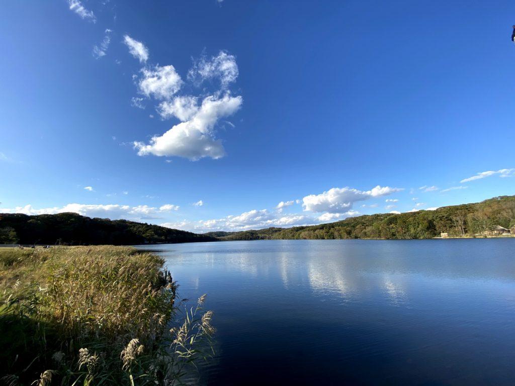 プロト湖が一面に広がってる